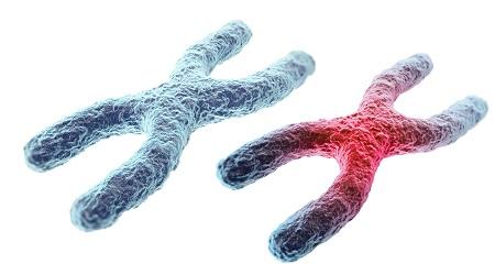 http://cellmaxlife.com/wp-content/uploads/2017/04/DNA-Mutation-CellMax.jpg